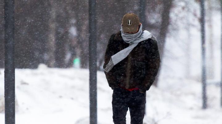 Мокрый снег, туман и ветер: в Самарской области испортится погода
