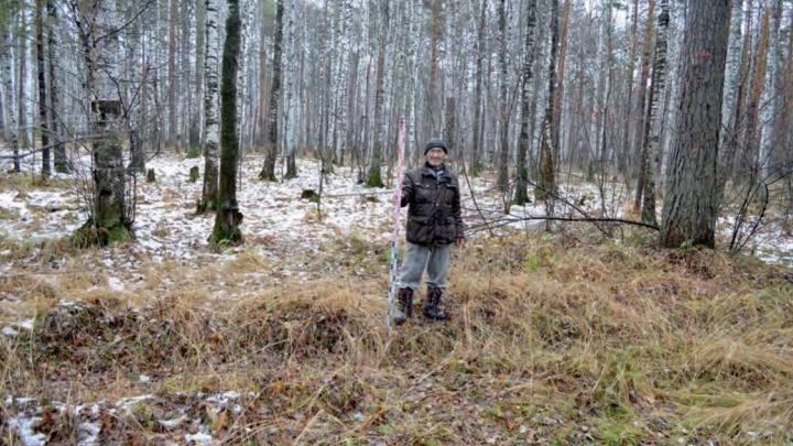 В Екатеринбурге налоговая забрала два гектара леса для строительства архивного центра