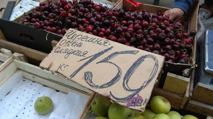 На улицах Новосибирска начали продавать сладкую летнюю ягоду