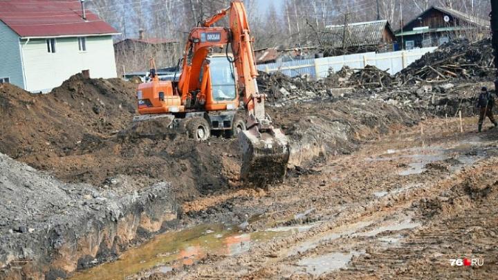 «Сроки сжатые»: что в Ярославле построят на месте разогнанной барахолки