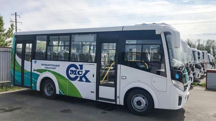 Десять автобусов из последней партии ПАЗов вышли на маршруты