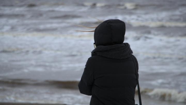Погода, что ты делаешь? Ночью в Архангельской области поднимется сильный ветер