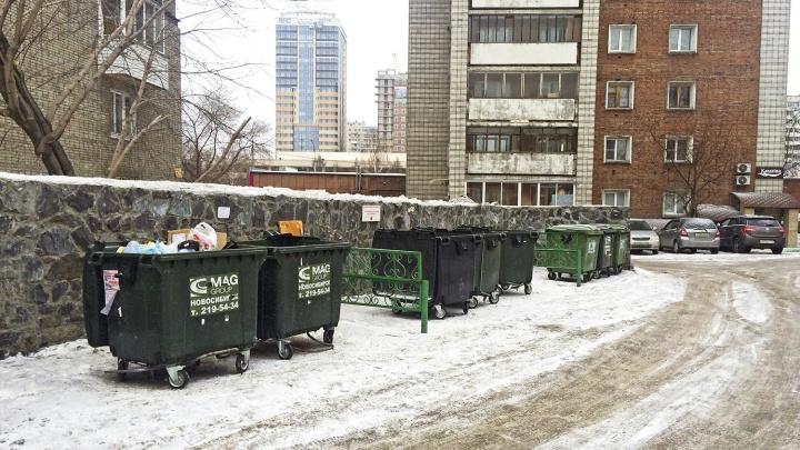 Экологи одобряют: Новосибирск обошёл остальные города-миллионники в правильной борьбе с мусором