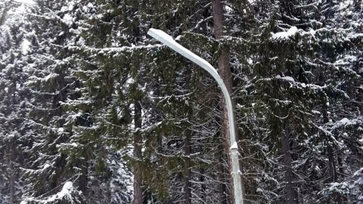 С пермской базы «Динамо» украли лампы, которые освещали лыжную трассу