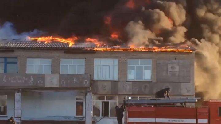 Видео: в Болотнинском районе загорелась администрация села