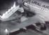 Появилось видео падения пассажиров «Уральских авиалиний» с трапа в аэропорту Барнаула