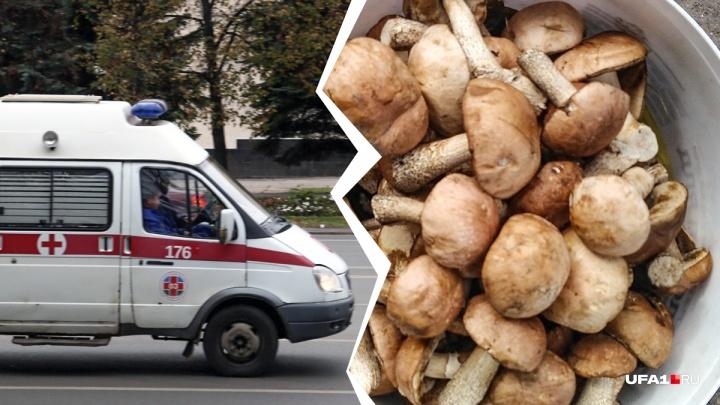 Трое детей в реанимации: в Башкирии семь человек отравились грибами
