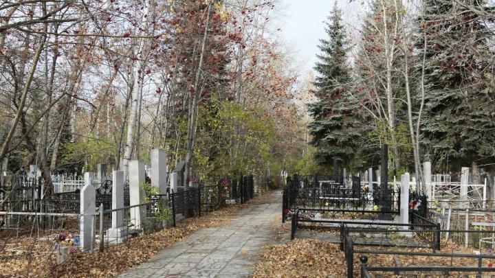 Зауральца задержали за надругательство над надгробиями