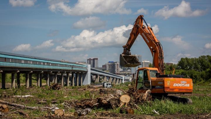 Для строительства ЛДС и новой станции метро вырубили 12 тысяч деревьев