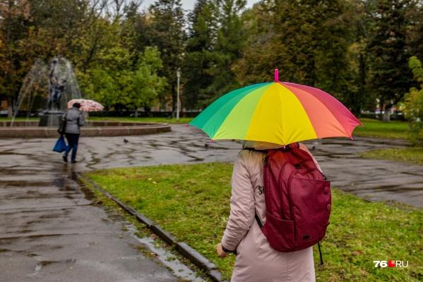 В ближайшие дни в Ярославле будет дождливо