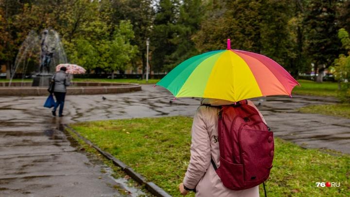 Потепление с ненастьем: погода преподнесёт новые сюрпризы жителям центра России