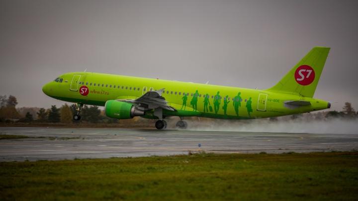 Самолёт со 156 пассажирами резко развернулся в небе над Омской областью и сел в Толмачёво