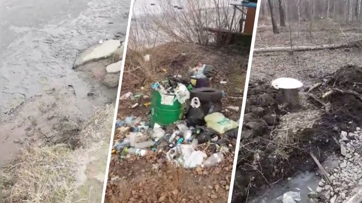 Красноярец высмеял парк на Мясокомбинате в стиле «Поли из деревки» и добился ответа от мэра