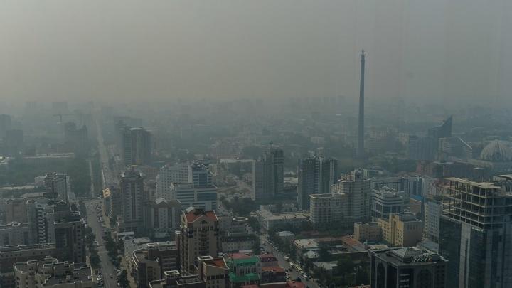 Гринпис нашёл в воздухе Екатеринбурга опасные вещества