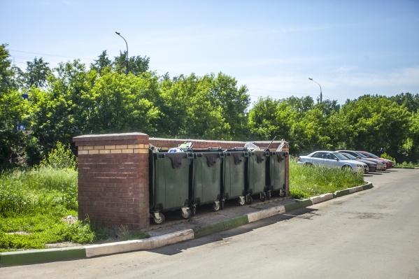 До этого жители бросали пакеты с мусором во дворах и под деревьями
