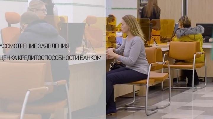 Понятно даже школьнику: Роспотребнадзор снял видеоинструкции о том, как не попасть в долговую яму