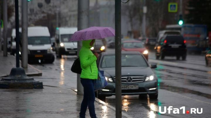 Ветер, гроза и опасность пожара: синоптики рассказали о погоде на 24 мая