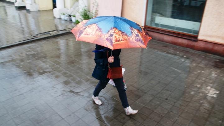 Доставайте зонтики: на следующей неделе Екатеринбург зальёт дождями