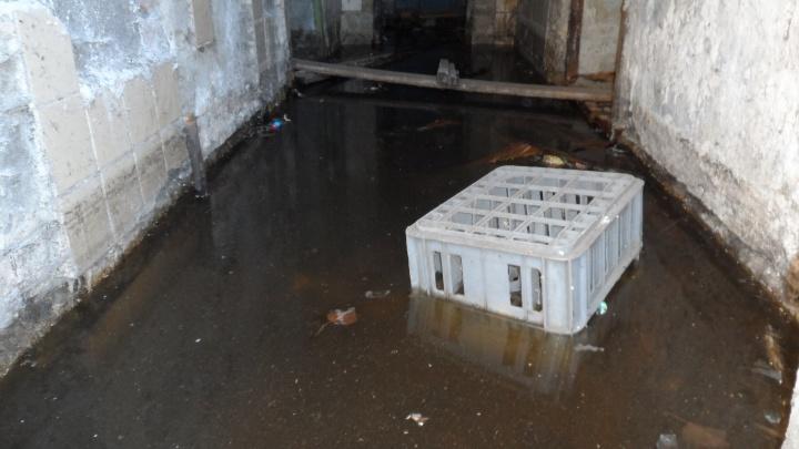 «Даже подойти невозможно»: замерзающий дом в центре Волгограда окутало смрадными запахами