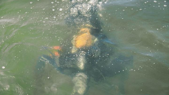 Пытался доплыть до берега, но утонул: в озере Круглом уже два дня ищут тело тюменца