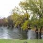 Ливень, град и шквальный ветер: на Дону сохраняется штормовая угроза
