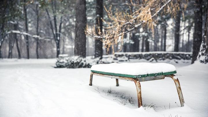 Само не растает: синоптики сказали, когда Новосибирск окончательно завалит снегом