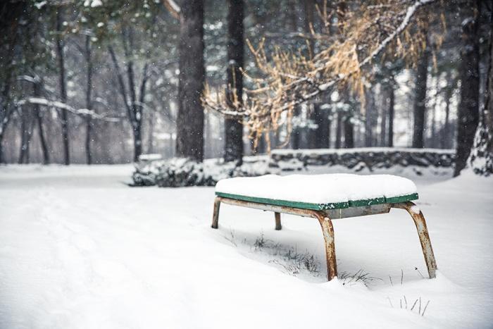 Похолодание придёт в Новосибирск к концу недели