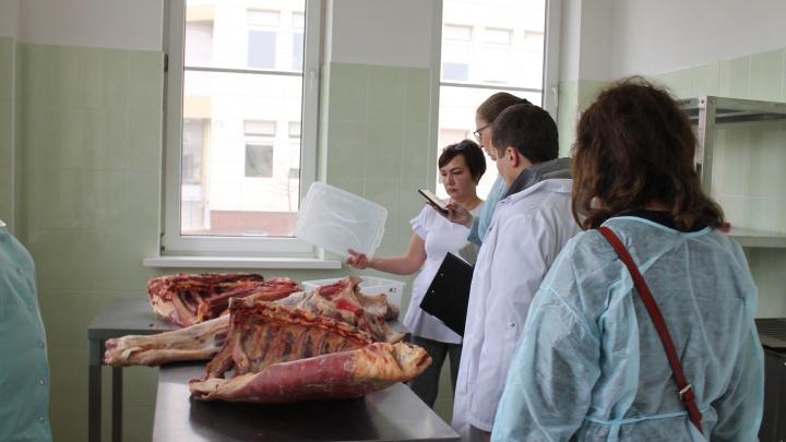 Некачественные мясо и молоко: в перинатальном центре Ростова нашли просроченные продукты