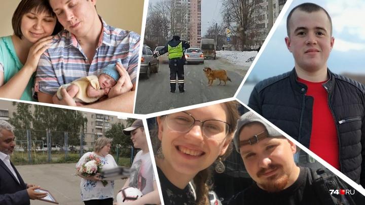 Дарили миллионы, спасали из огня, переводили через улицу собак: топ добрых поступков от героев 74.RU
