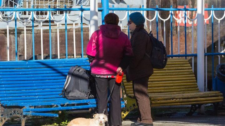 Следующий автобус придёт весной: власти закрывают дачные маршруты на зиму