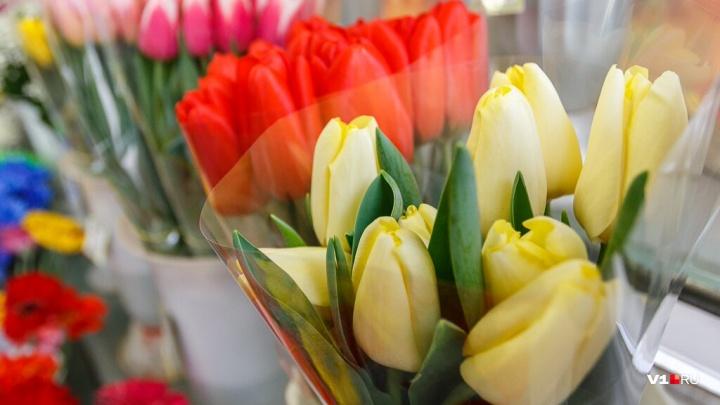 «Будьте подругами и любящими феями»: известные волгоградки поздравили своих мам в социальных сетях