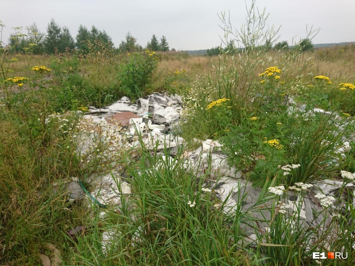 «Не хотим как в Жуковском»: жители Кольцово пожаловались на свалку, вокруг которой кружат вороны