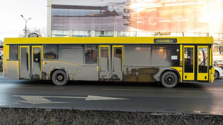 В Перми единственный автобусный маршрут до аэропорта планируют сократить до Песьянки