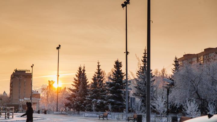 Тюмень засыплет снегом и окутает туманом: прогноз синоптиков на эти выходные