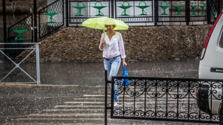 Дождь и северный ветер: в Новосибирске испортится погода