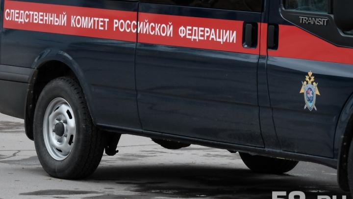 «Нанесла удары отверткой»: в Перми осудят гражданку Киргизии, которая убила новорожденного сына