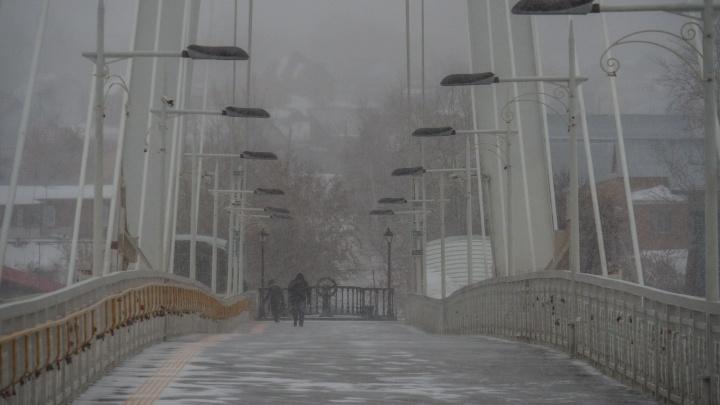 Ночные заморозки и сильный ветер: прогноз погоды в Тюмени на выходные