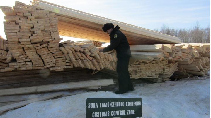 Таможенники прикрыли нелегальный канал поставки уральской древесины в Узбекистан
