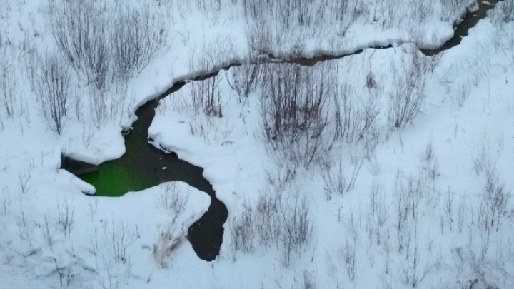 В Перми река Егошиха окрасилась в зелёный цвет. Что произошло?