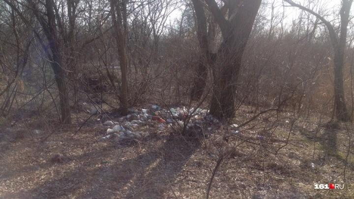 Ростовчане обнаружили стихийную свалку на берегу Голубого озера