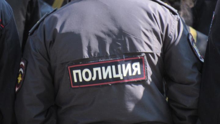 Курганца, ударившего полицейского, будут судить