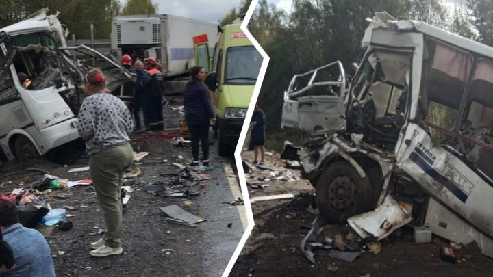 Столичные следователи попросили у ярославцев помощи в расследовании смертельного ДТП с автобусом