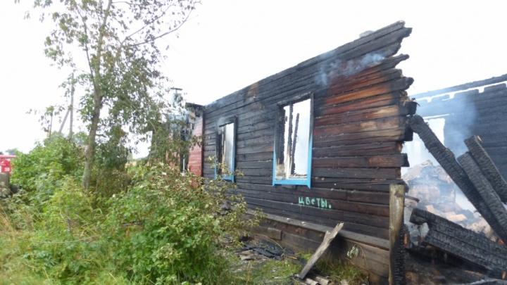 Жители Шенкурского района, убившие инвалида и его соседа, получили сроки