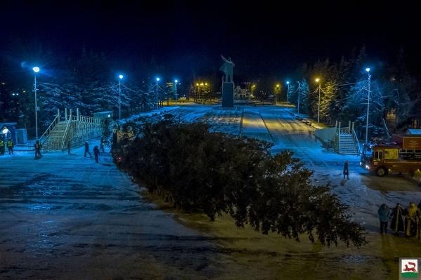 Водружение трупа дерева контролировал Ленин, впрочем, как и каждый год