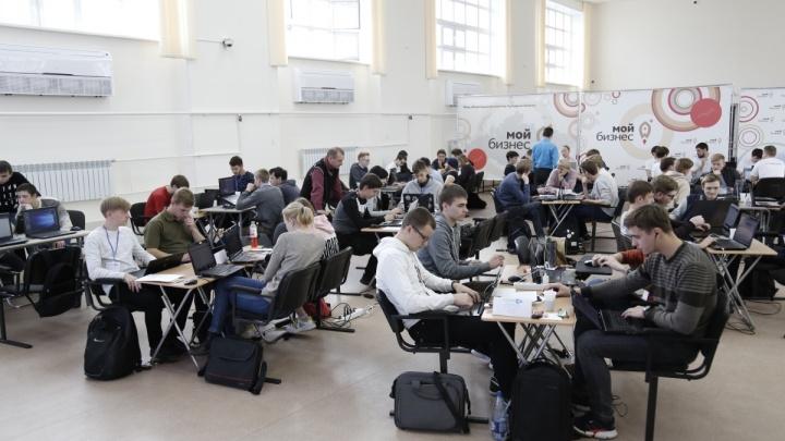 В Зауралье в 10 раз увеличится число студентов IT-специальностей