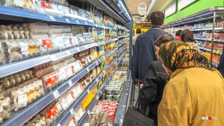 Самарские чиновники поддержали запрет на уменьшение прожиточного минимума