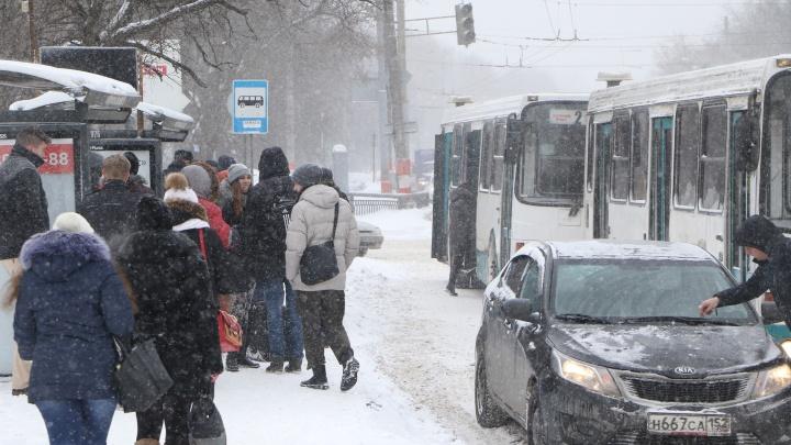 Прогноз погоды. Нижегородцев ждёт очень много снега и сильный ветер