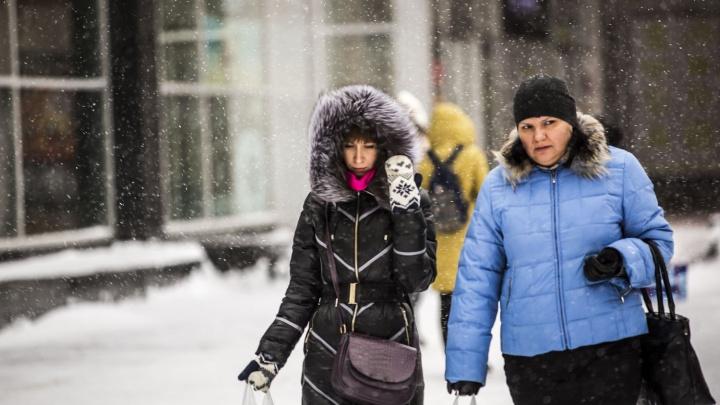 Лёгкие снегопады после морозов: синоптики рассказали о погоде на выходные
