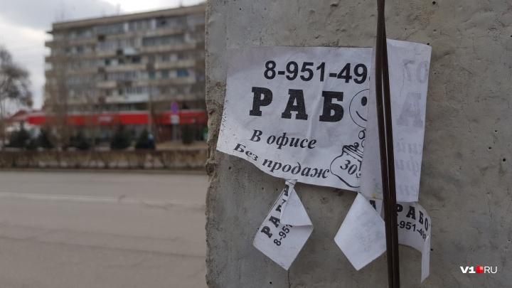 В Волгоградской области за год зарплаты выросли всегона 4,7%