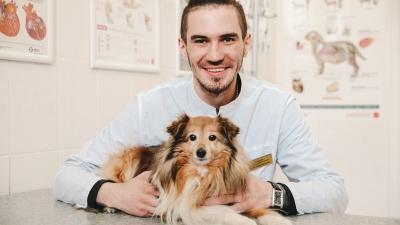 Мужчины-ветеринары со своими хвостатыми подопечными. 7 милых историй